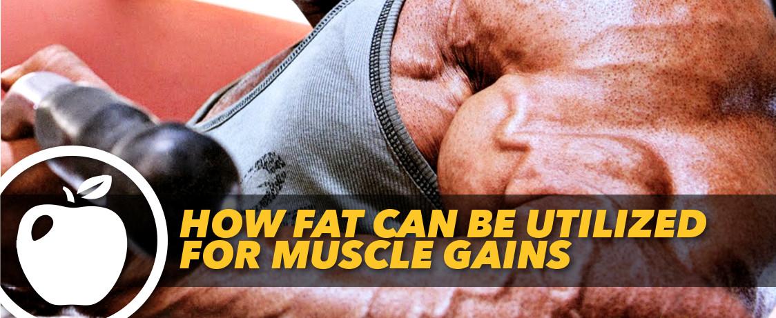 Generation Iron Fat Muscle
