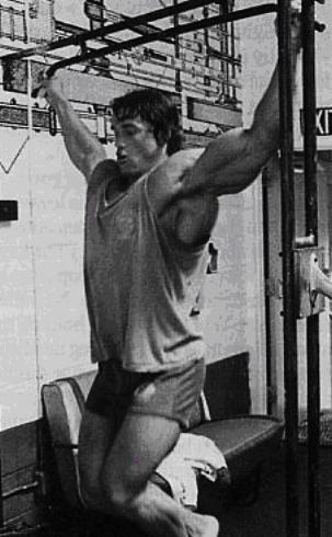 Arnold dips