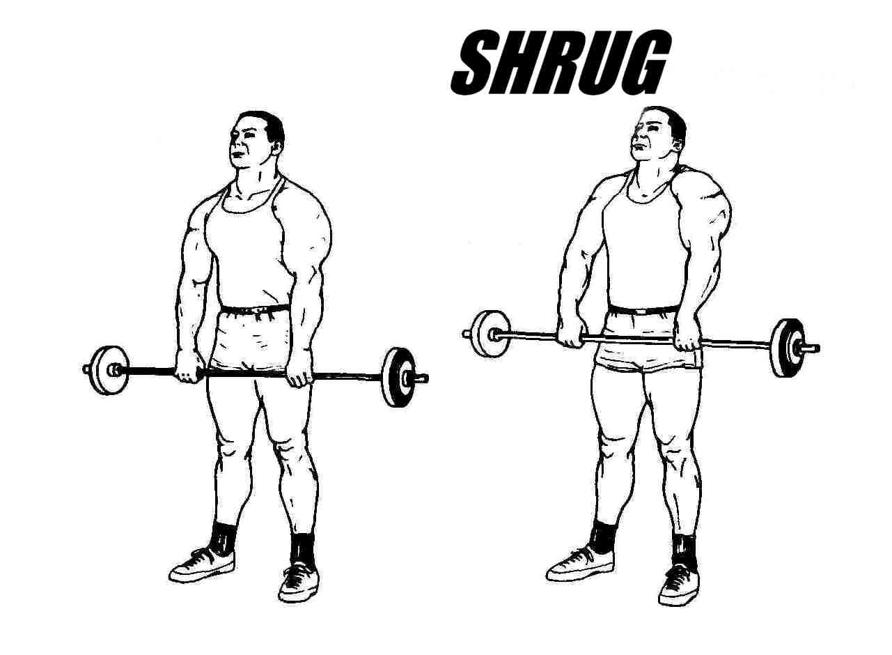 Shrug it Out: 4 Workouts to Give You Massive Traps