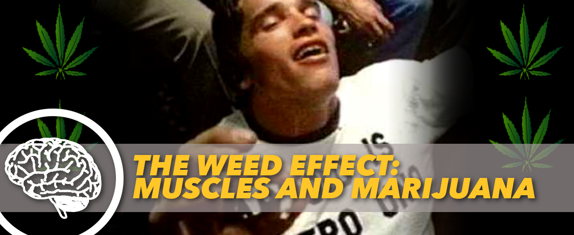 The Weed Effect Muscles And Marijuana Generation Iron