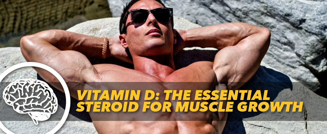 Vitamin D: The Essential Steroid for Muscle Growth