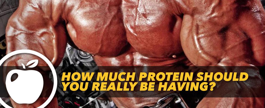 Generation Iron Protein