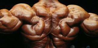 PHUL Training Max Gains Generation Iron