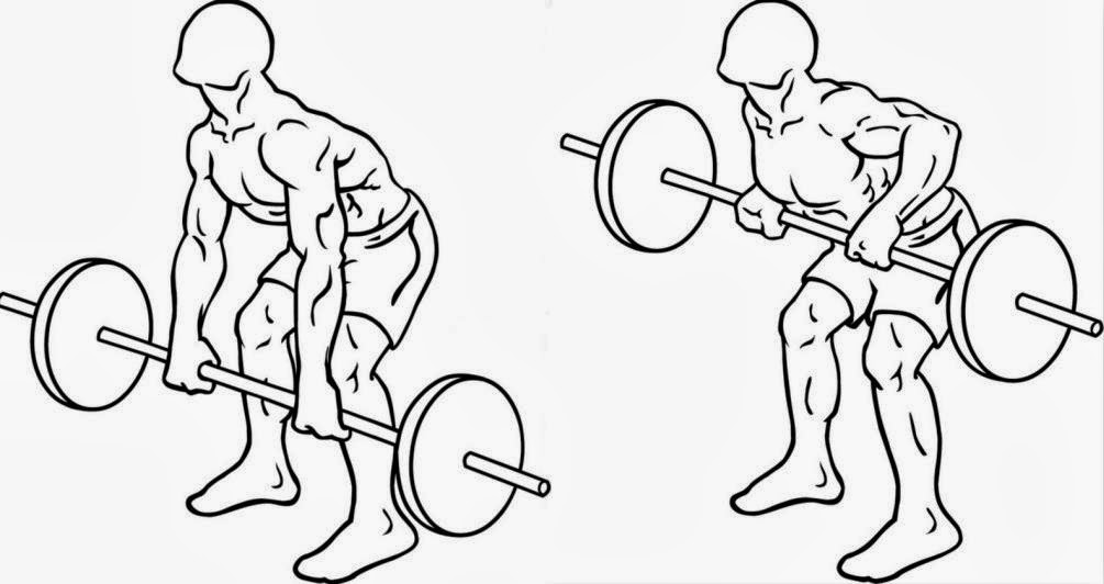 Generation Iron Bent Over Barbell Rows