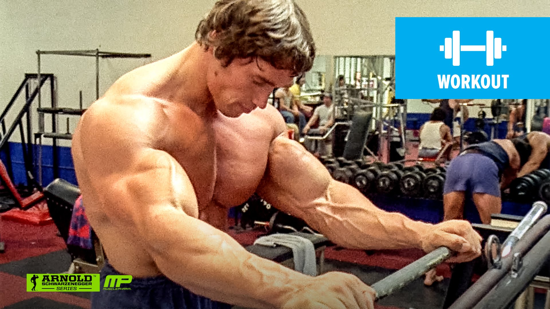 Arnold schwarzeneggers ultimate training tips generation iron malvernweather Gallery