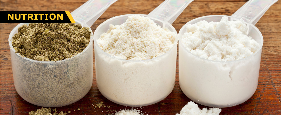 Whey Protein Concentrate vs Isolate vs Hydrolase Generation Iron
