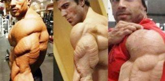 Best Bodybuilding Triceps Generation Iron