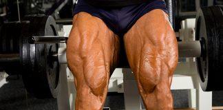 5 Exercises for Shredded Legs