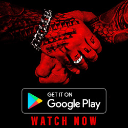 rich piana chronicles movie free online