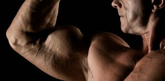 Generation Iron Exercise Guide Biceps