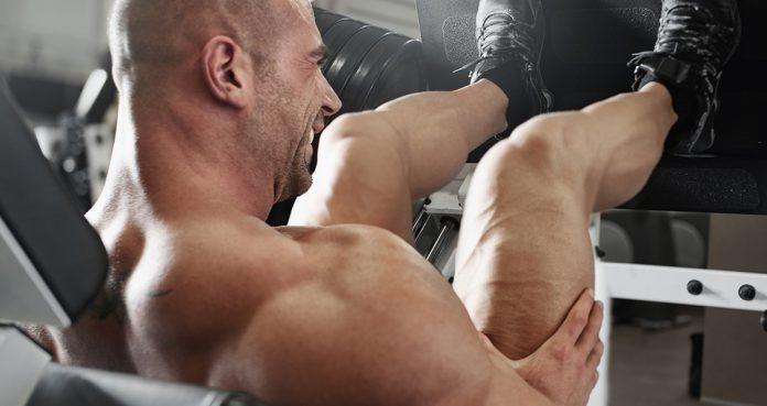 bodybuilding leg press