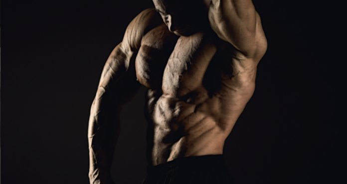 This Comprehensive Powerbuilding Guide Will Help You Develop