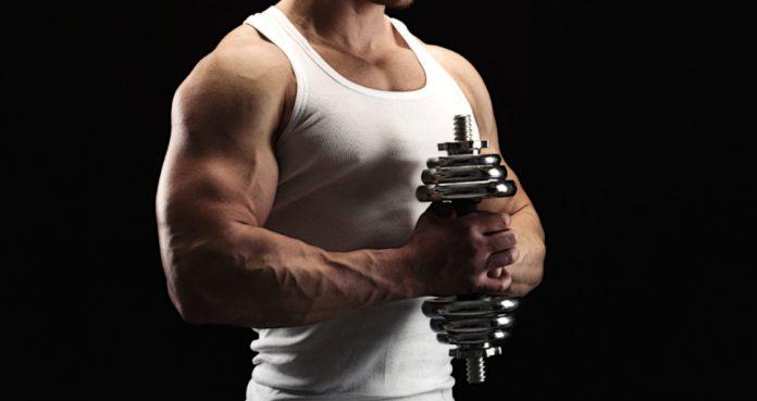 Forearms Exercises bodybuilding